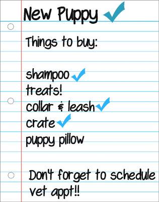 English Bulldog Puppies for sale supply checklist