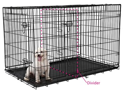 using a divider for a bulldog puppy