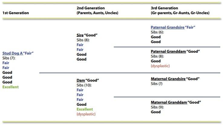 vert pedigree