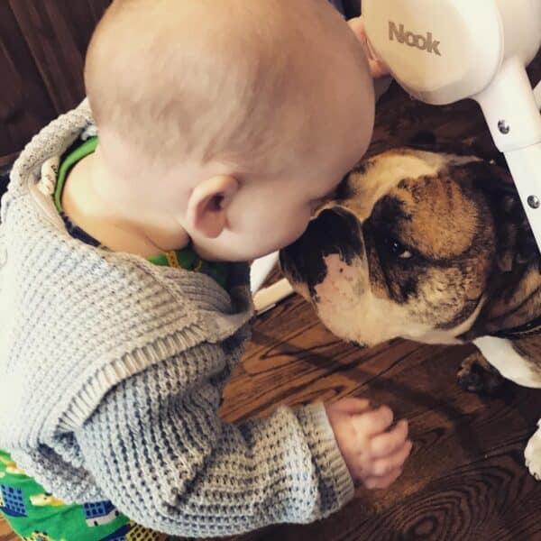 Children and your bulldog